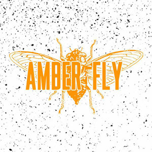 Photo of Amber Fly logo